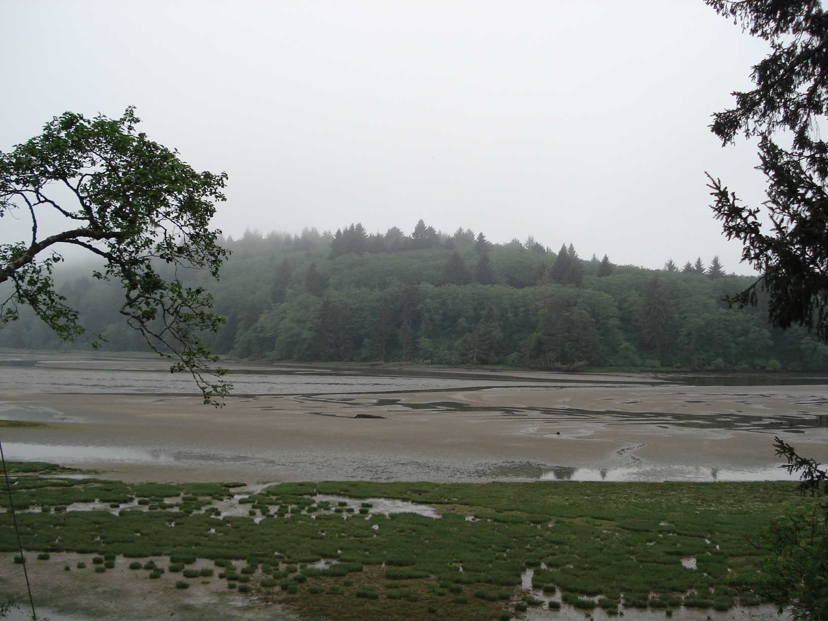 Nestucca Bay (Read More)